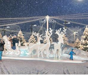 В Воронеже приостановлены торги на новогоднее оформление площади Ленина