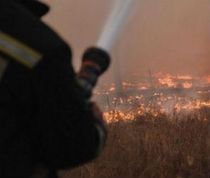 Стихия огня: Как Воронежская область боролась с пожарами этой осенью