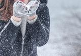 Небольшой снег и мороз обещают синоптики на выходных в Воронеже