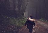 В Воронеже пропавшую во время прогулки 11-летнюю девочку нашли живой