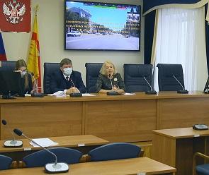 Воронежские депутаты раскритиковали деятельность платных парковок