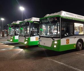 В Воронеже с 1 декабря на маршруты №6, 9КА и 14В выйдут новые автобусы