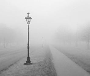 Воронежцев предупредили о сильном тумане