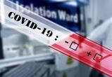 Бесплатные тесты на Covid-19 для воронежцев обошлись в 160 млн рублей