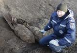 Возле детского сада в Воронежской области нашли невзорвавшуюся бомбу