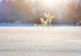Синоптики обещают снегопад и пасмурную погоду на новой неделе в Воронеже