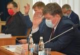 Гордума Воронежа займется развитием гражданского общества