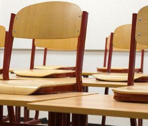В воронежских школах 20 классов отправили на дистанционку из-за ОРВИ
