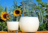 В Воронежской области поставили рекорд по производству молока