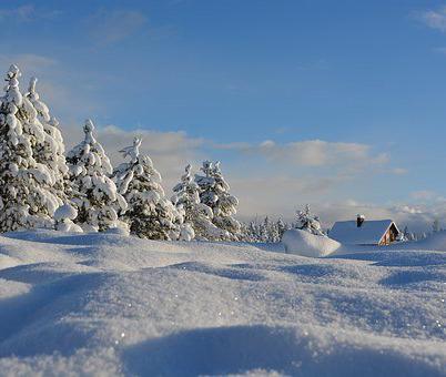 Синоптики рассказали, что на следующей недели в Воронеже будет похолодание