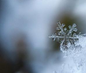 На Воронеж надвигается сильный снегопад и похолодание