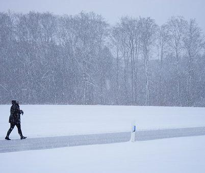 В мэрии рассказали, когда закончат вывозить снег с улиц города
