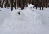 В воронежском парке «Дельфин» поселились белые медведи