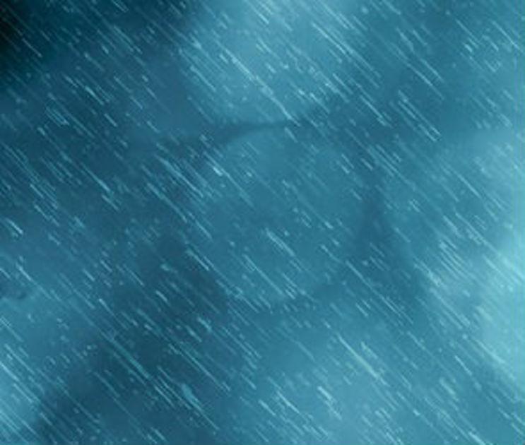 Дождливой и теплой будет последняя рабочая неделя января в Воронеже