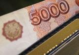В Воронежской области вопреки пандемии в 2020 году выросла зарплата