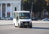 У общественного транспорта Воронежа изменилось оформление