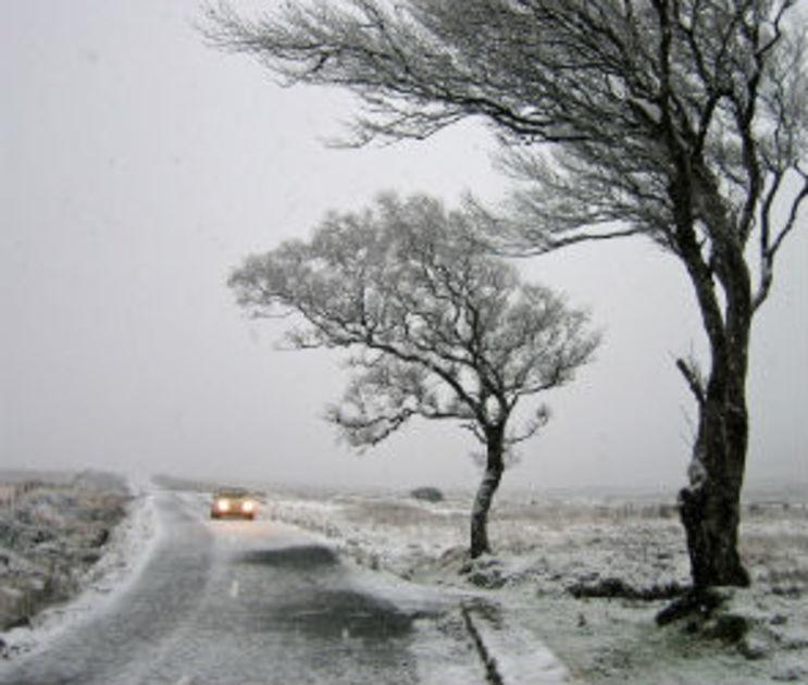 МЧС предупредило воронежцев о сильном ветре, гололеде и дожде