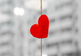 Надпочечники, симметрия и несвежая футболка: биохимик объясняет устройство любви