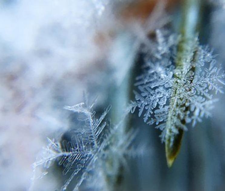 23-градусный мороз и сухую погоду обещают синоптики на рабочей неделе в Воронеже