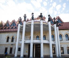 В Воронеже два детских театра возобновят работу после почти годового карантина