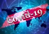 Власти сообщили о 279 новых инфицированных Covid-19 в Воронежской области