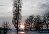 На короткой рабочей неделе в Воронеже резко похолодает