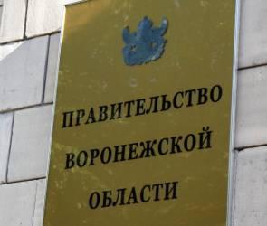Дублера губернатора в Молодежном правительстве выбрали в Воронеже