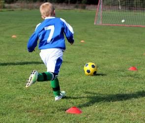 Где в Воронеже растят будущих звезд мирового футбола