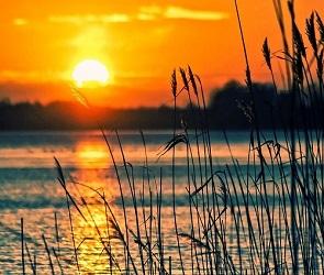 В Воронеже утвердили список мест отдыха у воды летом 2021 года