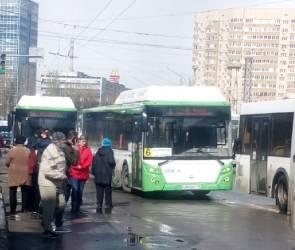 В Воронеже на левом берегу столкнулись четыре автобуса