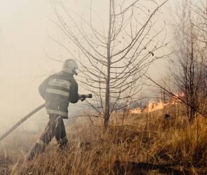 Пожар в воронежском селе удалось ликвидировать