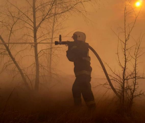 В Воронежской области вводят особый противопожарный режим