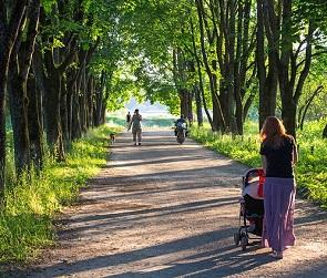 Воронежцам предлагают выбрать места для благоустройства в 2022 году