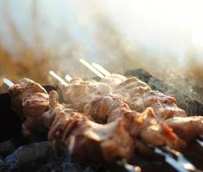 Перед праздниками воронежцам напомнили о безопасном приготовлении шашлыков
