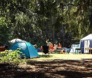В этом году в детских лагерях смены сократят до 14 дней