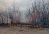 В Воронеже почти час тушили ландшафтный пожар у больницы №8