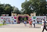 Концепцию фестиваля «Город-сад» разработает фирма из Москвы