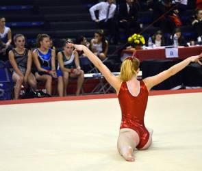 Гимнастика в Воронеже: где растят будущих олимпийских чемпионов