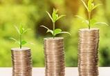 В апреле годовая инфляция в Воронежской области составила 7,3%