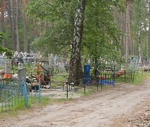 В Воронежском заповеднике образовалось незаконное человеческое кладбище