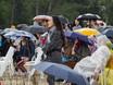 Перформанс под дождем: «Новая земля» на Платоновском фестивале 194073