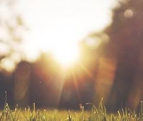 Синоптики пообещали воронежцам возвращение 27-градусной жары
