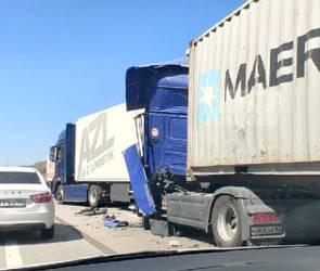 Под Воронежем умерла 12-летняя девочка из-за массового ДТП с участием 8 машин