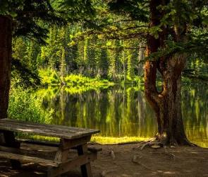 Благоустройством «Перламутрового озера» займется индивидуальный предприниматель