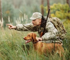 Время пострелять: в Воронежской области 5 августа начнется сезон охоты