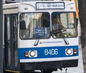 Число троллейбусных маршрутов в Воронеже увеличат с четырех до семи