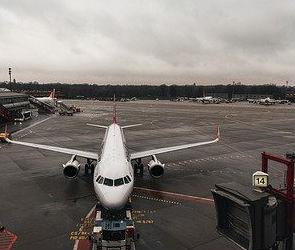 Вылетевший из Минвод самолет экстренно приземлился в Воронеже