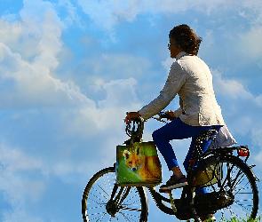 Польза велосипеда: крутим педали для тонуса мышц и Т-клеток