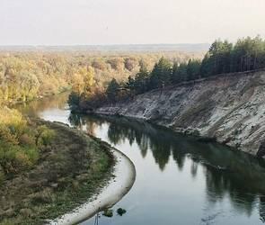 Роспотребнадзор проверит качество воды в воронежской реке Дон