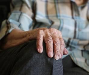 Для воронежских пенсионеров открыли факультеты дополнительного образования